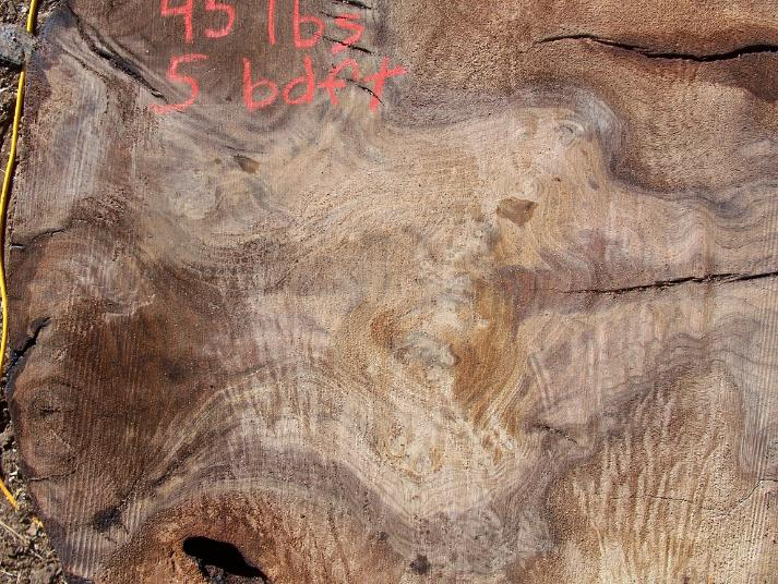 "Black Walnut Burl 6"" X 6"" X 3"" Free Shiping"